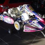 KARTSALE - Brand New 2016 X30 Kosmic Lynx for sale