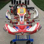 KARTSALE - 2014 Birel Cadet Kart with Briggs & Stratton LO206 engine and lots of spares in VERY GOOD condition!!!